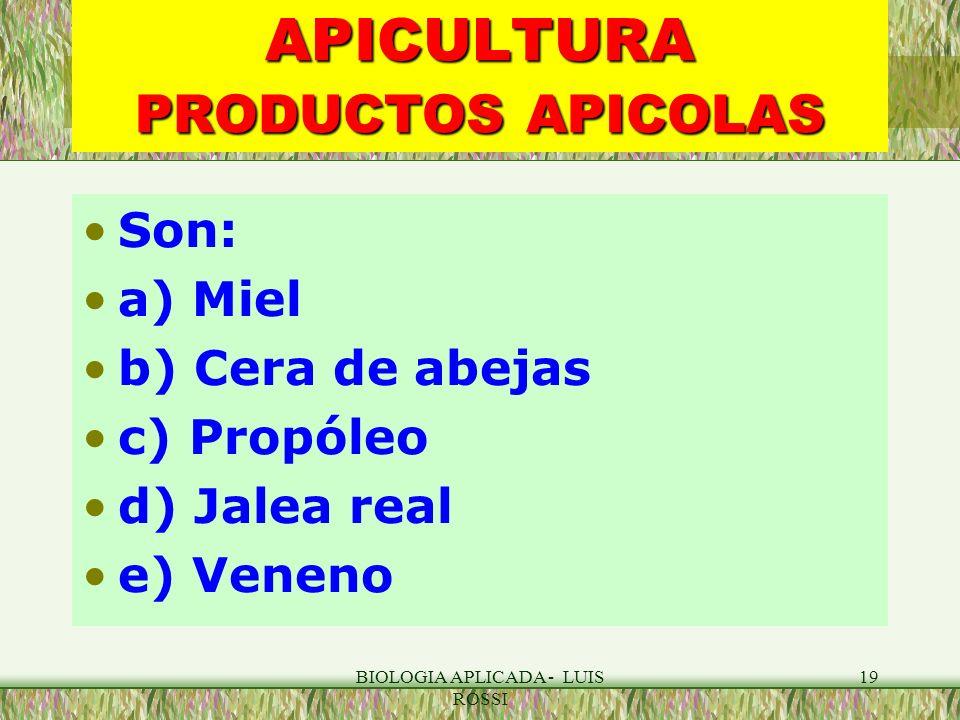 BIOLOGIA APLICADA - LUIS ROSSI 19 APICULTURA PRODUCTOS APICOLAS Son: a) Miel b) Cera de abejas c) Propóleo d) Jalea real e) Veneno