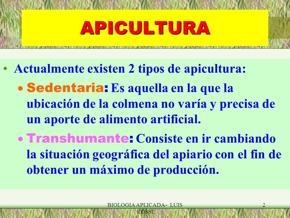 BIOLOGIA APLICADA - LUIS ROSSI 23 APICULTURA : MIEL Composición: Carbohidratos ( > 95% materia seca), ácidos libres, enzimas, compuestos fenólicos, aa, proteínas, minerales, lípidos, vitaminas, aromas y agua (13-15%).