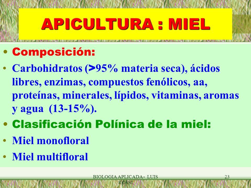 BIOLOGIA APLICADA - LUIS ROSSI 23 APICULTURA : MIEL Composición: Carbohidratos ( > 95% materia seca), ácidos libres, enzimas, compuestos fenólicos, aa