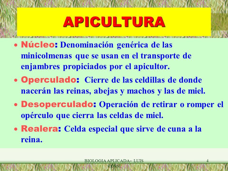 BIOLOGIA APLICADA - LUIS ROSSI 4 APICULTURA Núcleo: Denominación genérica de las minicolmenas que se usan en el transporte de enjambres propiciados po