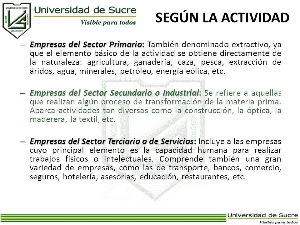 SEGÚN LA ACTIVIDAD – Empresas del Sector Primario: – Empresas del Sector Primario: También denominado extractivo, ya que el elemento básico de la acti