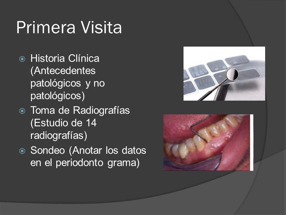 Primera Visita Historia Clínica (Antecedentes patológicos y no patológicos) Toma de Radiografías (Estudio de 14 radiografías) Sondeo (Anotar los datos