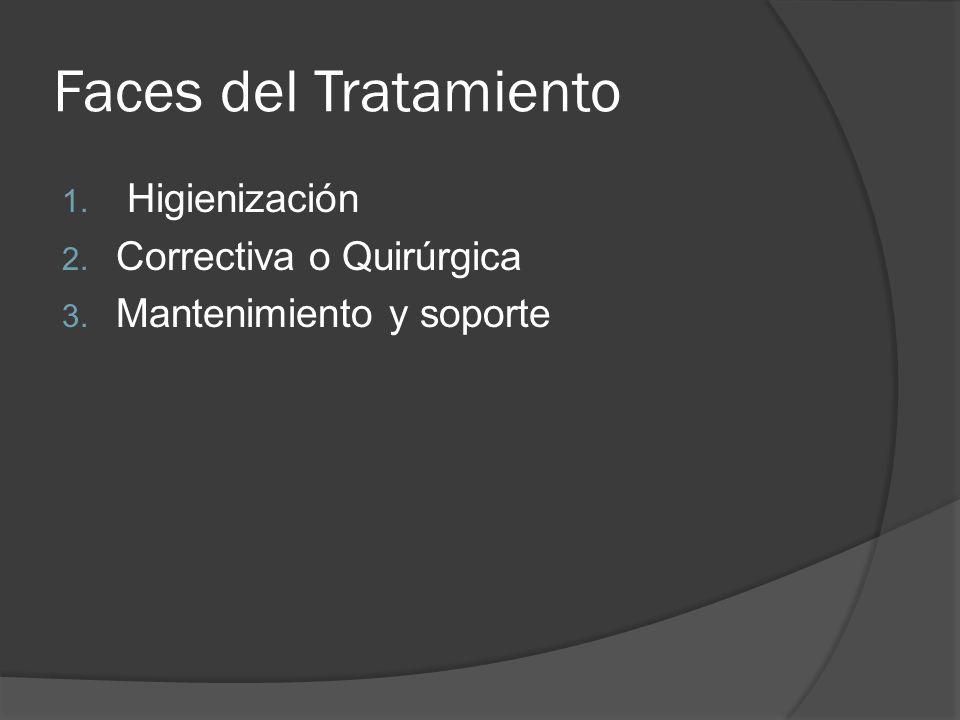 Faces del Tratamiento 1. Higienización 2. Correctiva o Quirúrgica 3. Mantenimiento y soporte