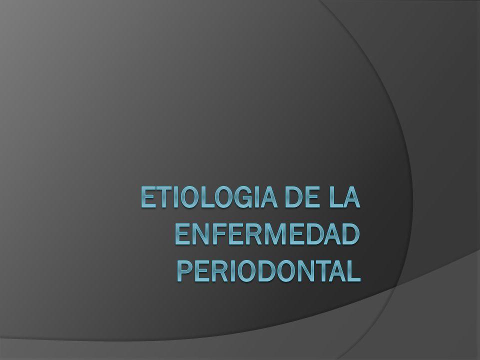 El periodonto reacciona al proceso de envejecimiento de dos formas: Poca higiene afecta a los tejidos periodontales lo cual provoca gingivitis y con el tiempo formación de bolsas, enfermedad periodontal y pérdida dental.