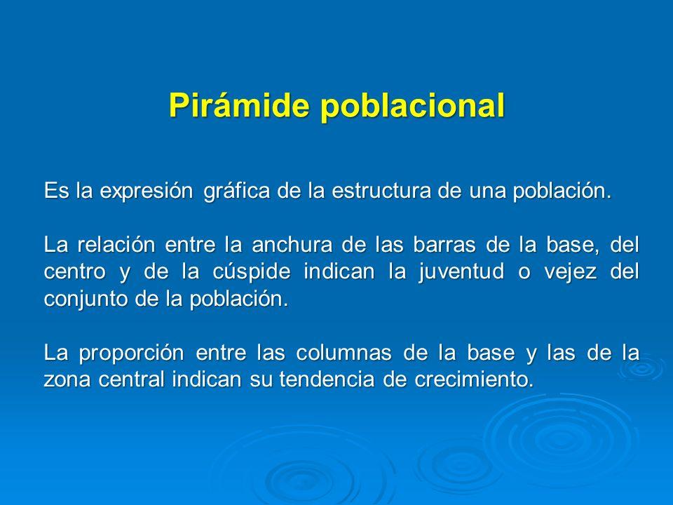 Pirámide poblacional Es la expresión gráfica de la estructura de una población. La relación entre la anchura de las barras de la base, del centro y de
