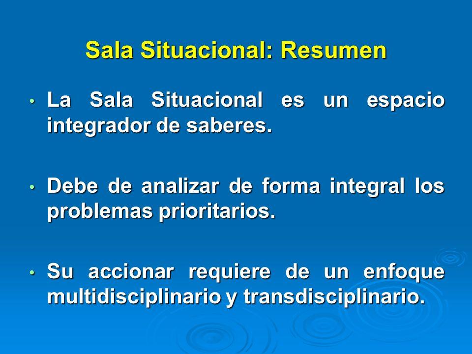 Sala Situacional: Resumen La Sala Situacional es un espacio integrador de saberes. La Sala Situacional es un espacio integrador de saberes. Debe de an