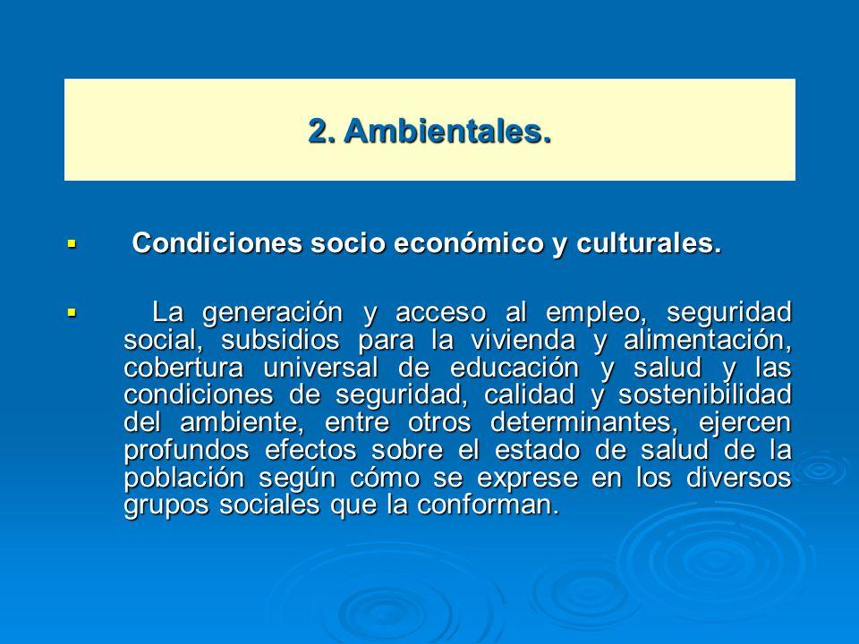 Condiciones socio económico y culturales. Condiciones socio económico y culturales. La generación y acceso al empleo, seguridad social, subsidios para