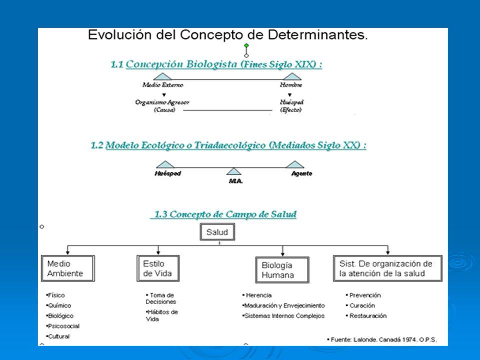 Regulación de la participación individual y grupal en los procesos económicos Regulación de la participación individual y grupal en los procesos económicos Reordenamiento de procesos productivos Reordenamiento de procesos productivos Políticas de Salud Pública enfocadas a modificar los perfiles de los problemas de salud: