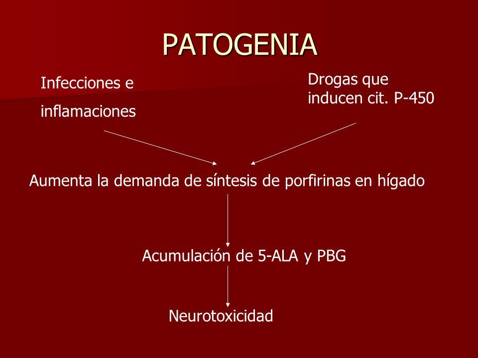 PATOGENIA Infecciones e inflamaciones Drogas que inducen cit. P-450 Aumenta la demanda de síntesis de porfirinas en hígado Acumulación de 5-ALA y PBG