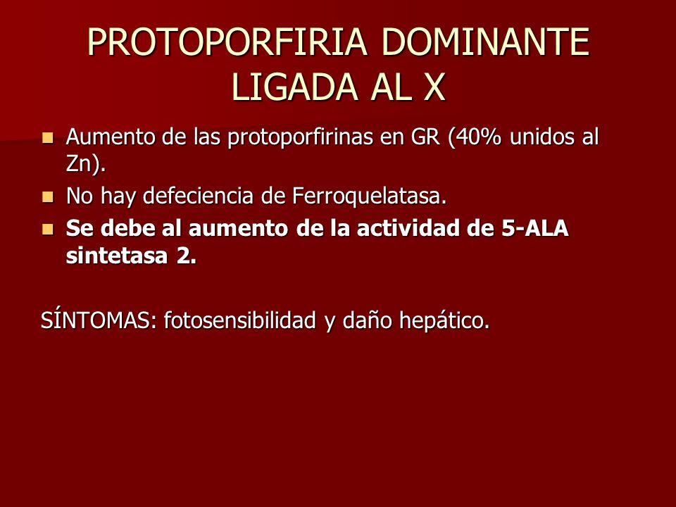 PROTOPORFIRIA DOMINANTE LIGADA AL X Aumento de las protoporfirinas en GR (40% unidos al Zn). Aumento de las protoporfirinas en GR (40% unidos al Zn).