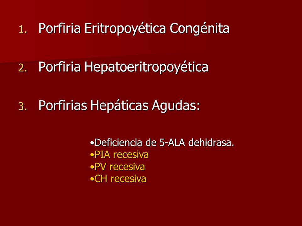 1. Porfiria Eritropoyética Congénita 2. Porfiria Hepatoeritropoyética 3. Porfirias Hepáticas Agudas: Deficiencia de 5-ALA dehidrasa.Deficiencia de 5-A