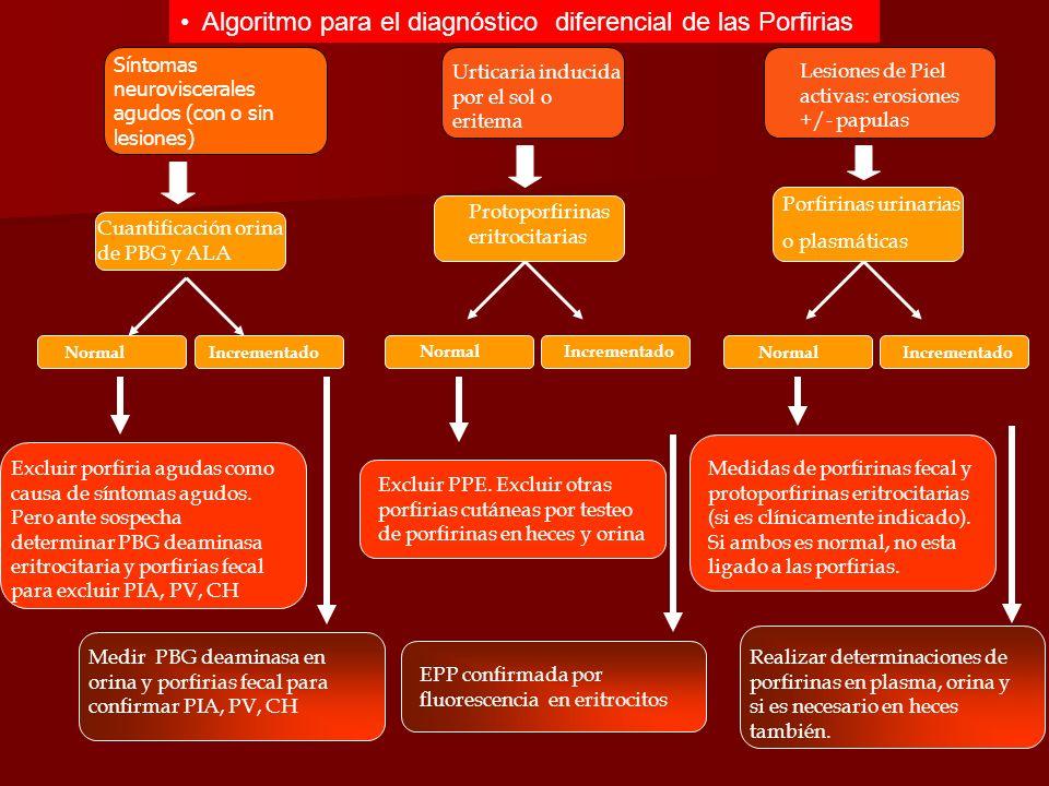 Normal Incrementado Normal Incrementado Normal Incrementado Algoritmo para el diagnóstico diferencial de las Porfirias Urticaria inducida por el sol o