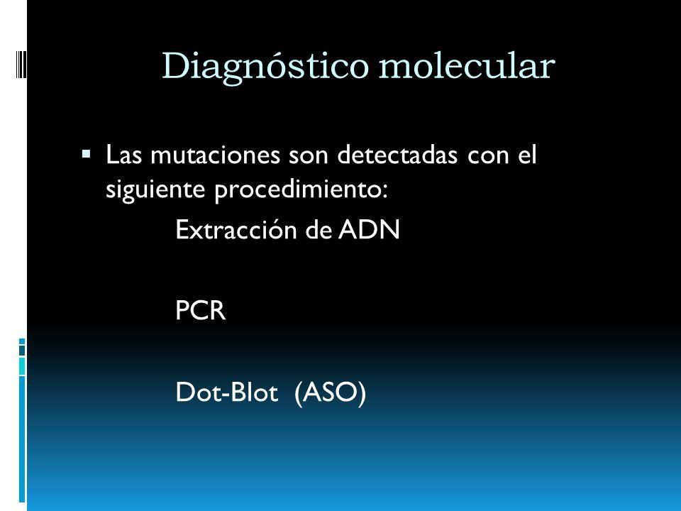 Diagnóstico molecular Las mutaciones son detectadas con el siguiente procedimiento: Extracción de ADN PCR Dot-Blot (ASO)