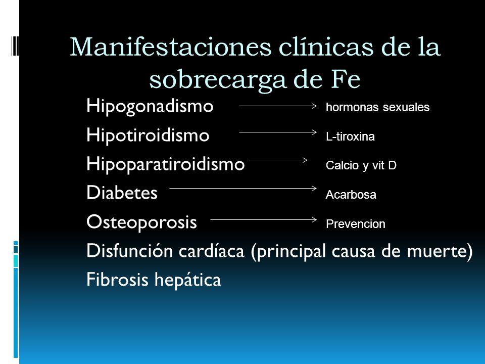 Manifestaciones clínicas de la sobrecarga de Fe Hipogonadismo Hipotiroidismo Hipoparatiroidismo Diabetes Osteoporosis Disfunción cardíaca (principal c