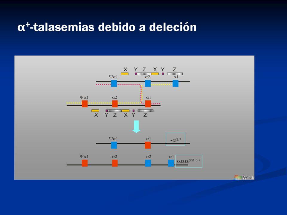 α + -talasemias debido a deleción