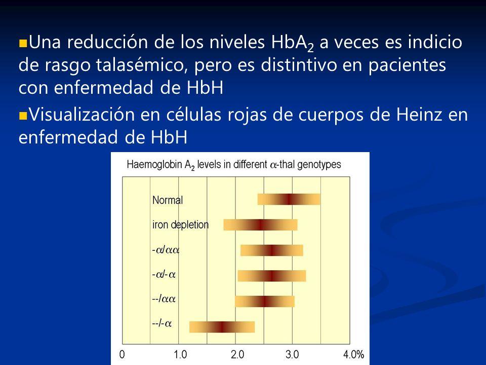 Una reducción de los niveles HbA 2 a veces es indicio de rasgo talasémico, pero es distintivo en pacientes con enfermedad de HbH Visualización en célu