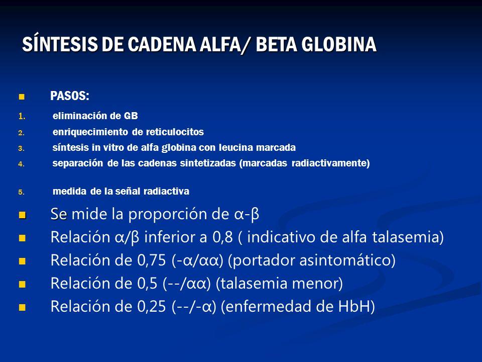 PASOS: 1. 1. eliminación de GB 2. 2. enriquecimiento de reticulocitos 3. 3. síntesis in vitro de alfa globina con leucina marcada 4. 4. separación de