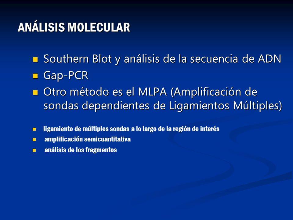Southern Blot y análisis de la secuencia de ADN Southern Blot y análisis de la secuencia de ADN Gap-PCR Gap-PCR Otro método es el MLPA (Amplificación