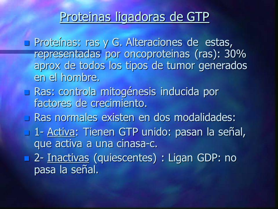 Proteinas ligadoras de GTP n Proteínas: ras y G. Alteraciones de estas, representadas por oncoproteinas (ras): 30% aprox de todos los tipos de tumor g