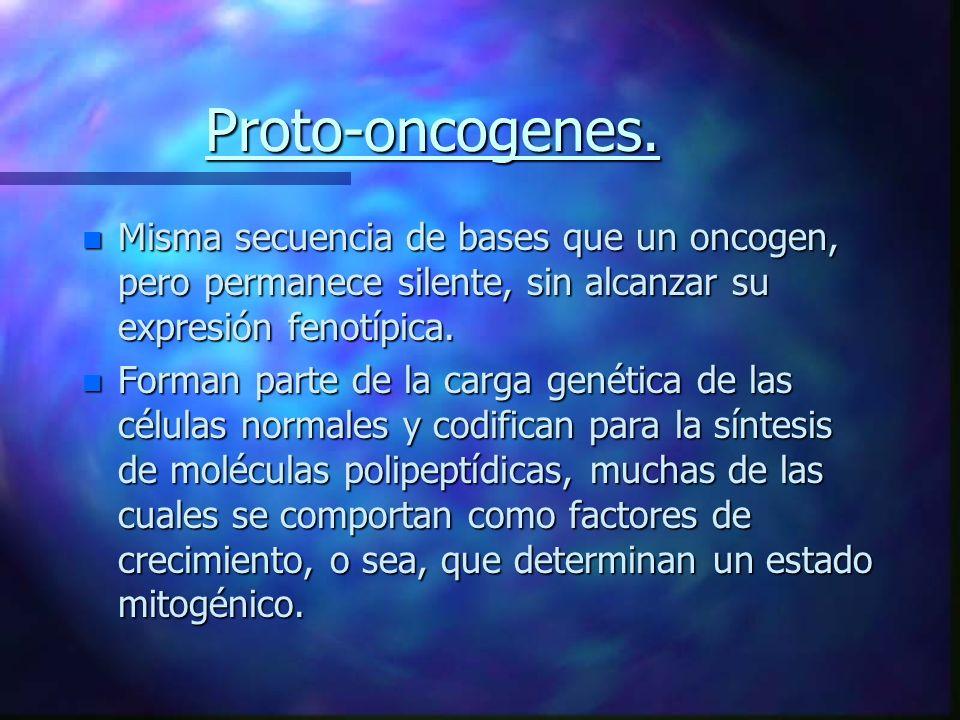 Proto-oncogenes. n Misma secuencia de bases que un oncogen, pero permanece silente, sin alcanzar su expresión fenotípica. n Forman parte de la carga g
