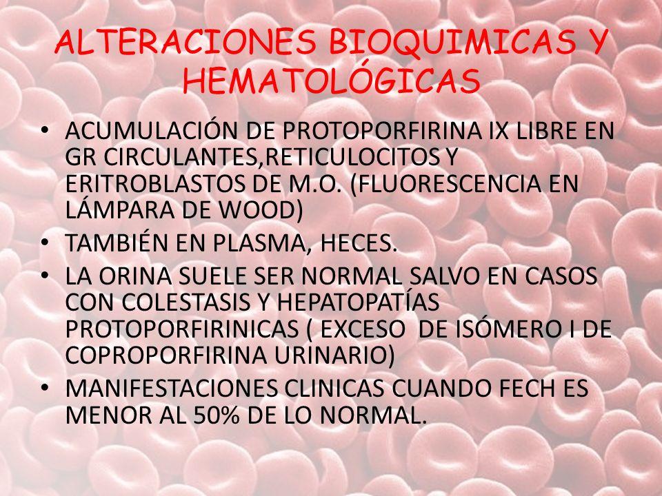 ALTERACIONES BIOQUIMICAS Y HEMATOLÓGICAS ACUMULACIÓN DE PROTOPORFIRINA IX LIBRE EN GR CIRCULANTES,RETICULOCITOS Y ERITROBLASTOS DE M.O. (FLUORESCENCIA