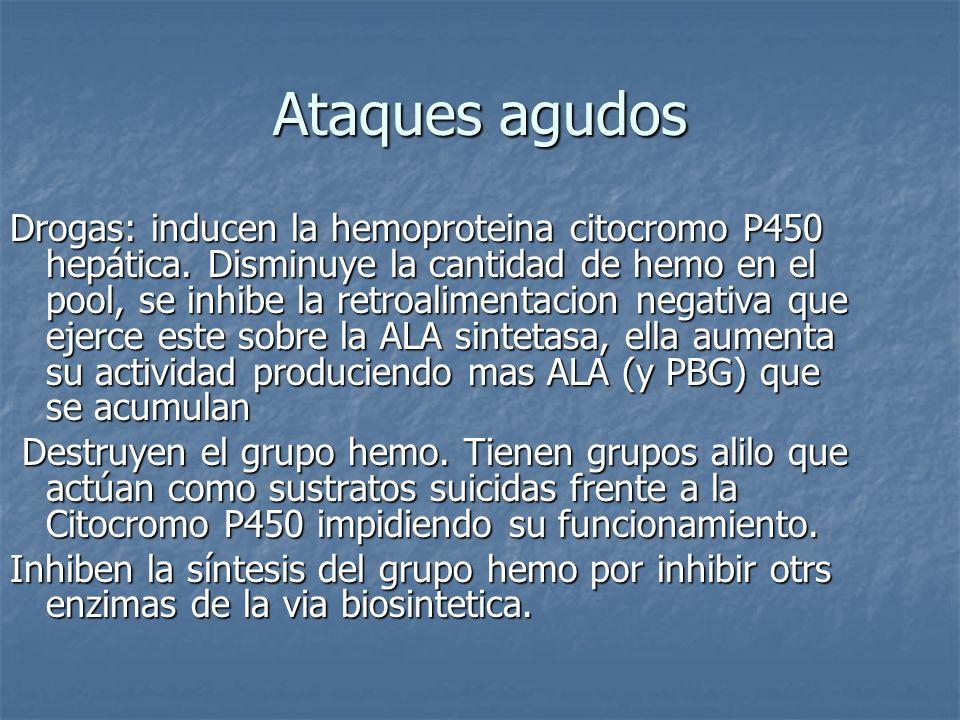 Ataques agudos Drogas: inducen la hemoproteina citocromo P450 hepática. Disminuye la cantidad de hemo en el pool, se inhibe la retroalimentacion negat