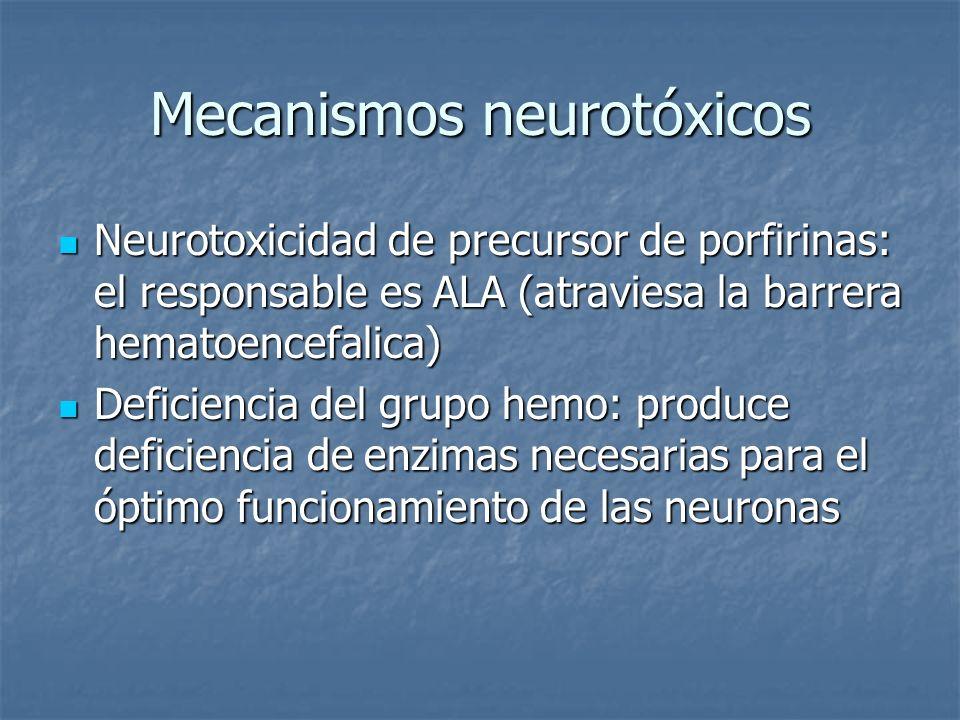 Mecanismos neurotóxicos Neurotoxicidad de precursor de porfirinas: el responsable es ALA (atraviesa la barrera hematoencefalica) Neurotoxicidad de pre