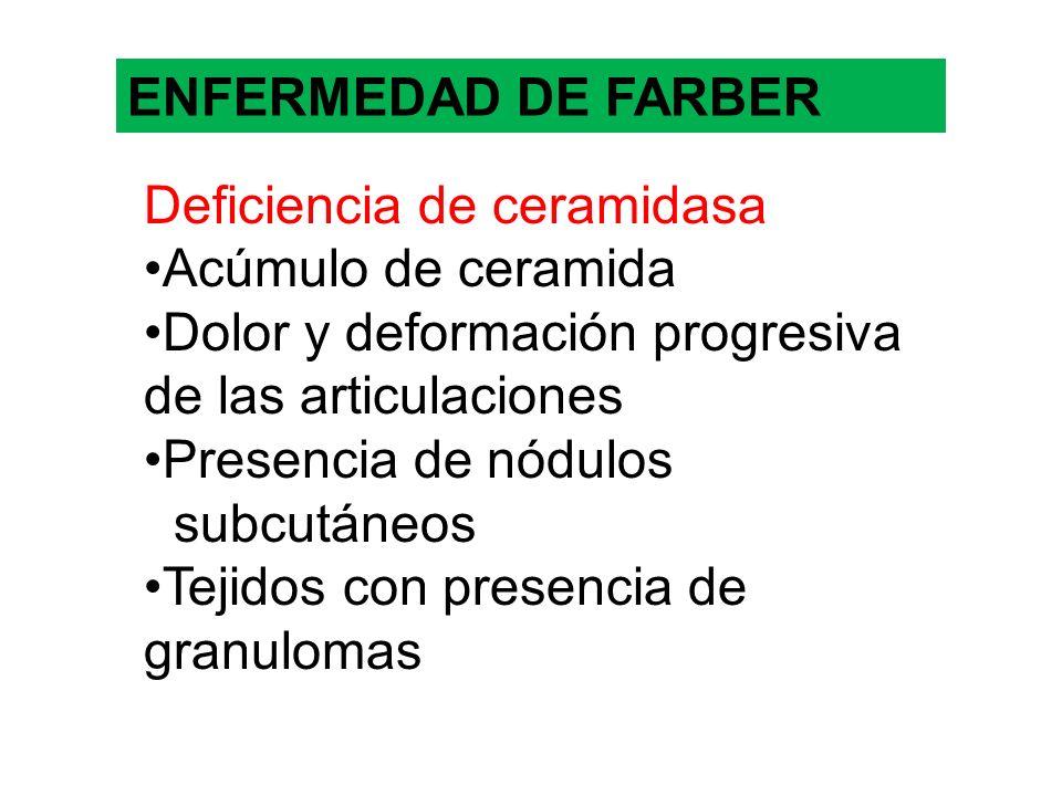 ENFERMEDAD DE FARBER Deficiencia de ceramidasa Acúmulo de ceramida Dolor y deformación progresiva de las articulaciones Presencia de nódulos subcutáne