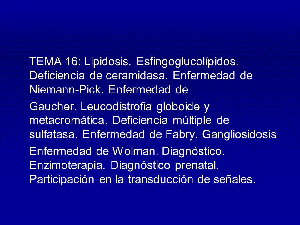 TEMA 16: Lipidosis. Esfingoglucolípidos. Deficiencia de ceramidasa. Enfermedad de Niemann-Pick. Enfermedad de Gaucher. Leucodistrofia globoide y metac