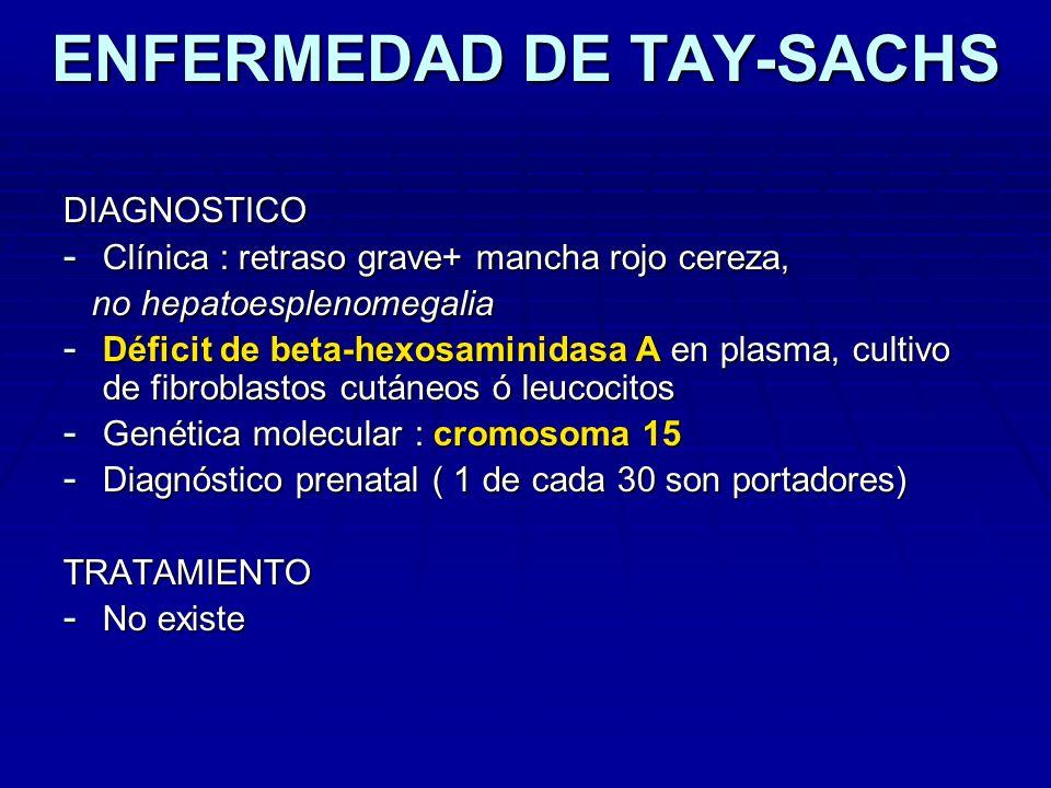 ENFERMEDAD DE TAY-SACHS DIAGNOSTICO - Clínica : retraso grave+ mancha rojo cereza, no hepatoesplenomegalia no hepatoesplenomegalia - Déficit de beta-h
