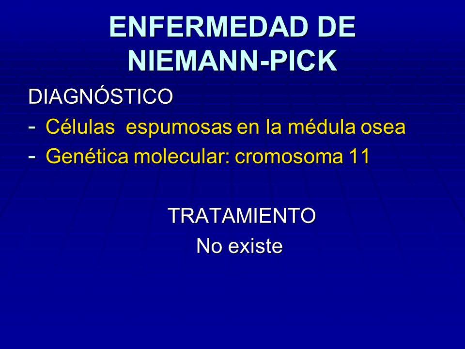 ENFERMEDAD DE NIEMANN-PICK DIAGNÓSTICO - Células espumosas en la médula osea - Genética molecular: cromosoma 11 TRATAMIENTO No existe No existe