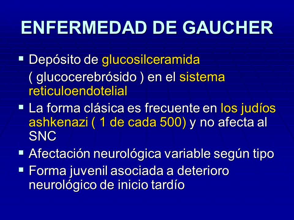 ENFERMEDAD DE GAUCHER Déficit de beta-glucocerebrósido-hidroxilasa Déficit de beta-glucocerebrósido-hidroxilasa Esplenomegalia = primer signo clínico Esplenomegalia = primer signo clínico Hiperesplenismo e insuf.