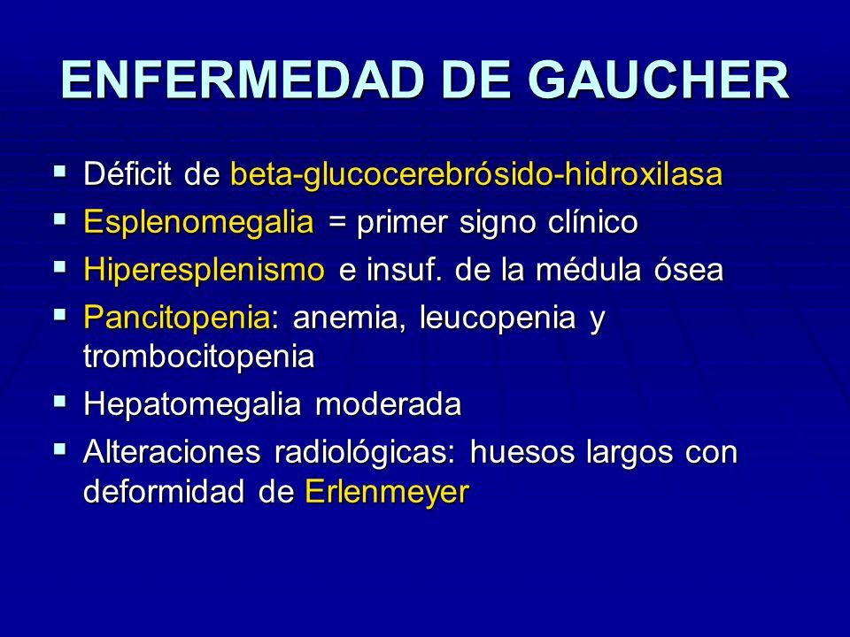 ENFERMEDAD DE GAUCHER Déficit de beta-glucocerebrósido-hidroxilasa Déficit de beta-glucocerebrósido-hidroxilasa Esplenomegalia = primer signo clínico