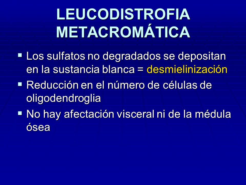 LEUCODISTROFIA METACROMÁTICA Los sulfatos no degradados se depositan en la sustancia blanca = desmielinización Los sulfatos no degradados se depositan