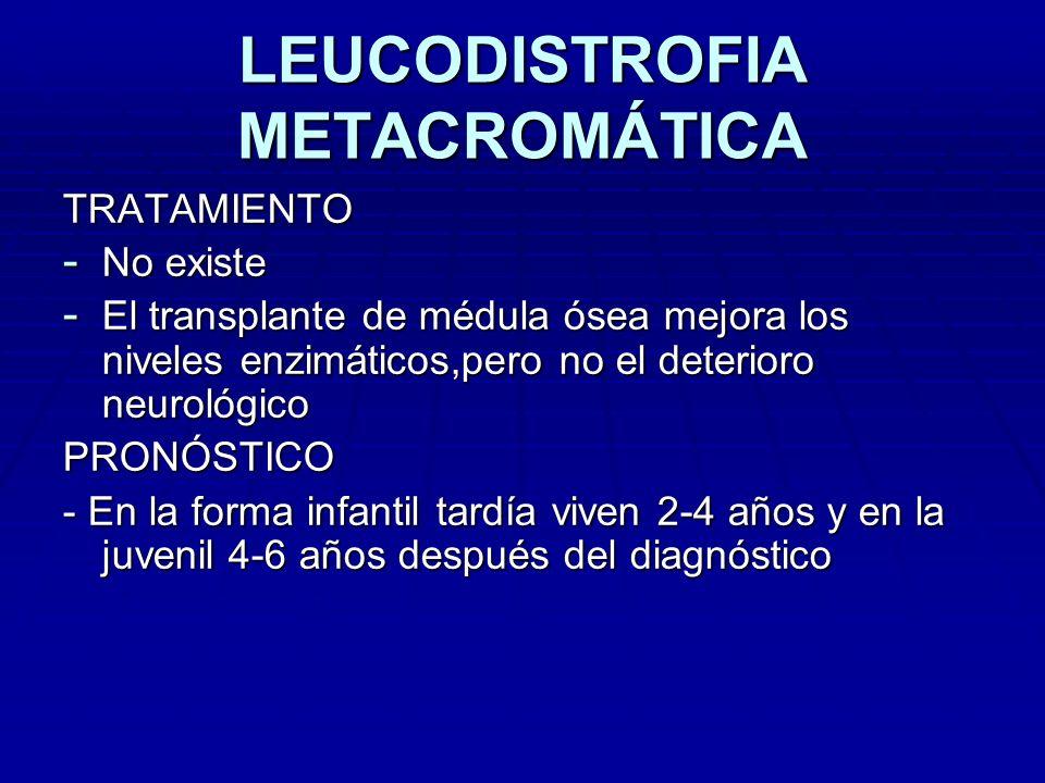 LEUCODISTROFIA METACROMÁTICA TRATAMIENTO - No existe - El transplante de médula ósea mejora los niveles enzimáticos,pero no el deterioro neurológico P