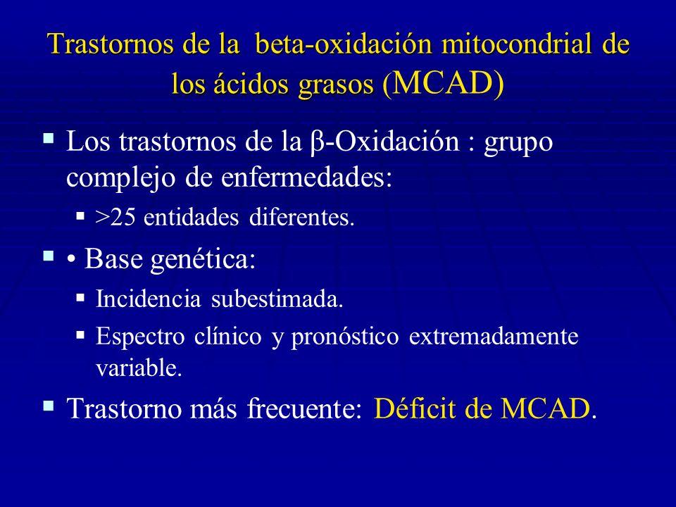 Trastornos de la beta-oxidación mitocondrial de los ácidos grasos Trastornos de la beta-oxidación mitocondrial de los ácidos grasos (MCAD): Clínica Hipoglucemia en ayuno, habitualmente sin cetonuria Hipoglucemia en ayuno, habitualmente sin cetonuria Miocardiopatía y/o miopatía de gravedad variable Miocardiopatía y/o miopatía de gravedad variable Hepatopatía de gravedad variable Hepatopatía de gravedad variable Otros: Otros: Muerte súbita Muerte súbita Tubulopatía Tubulopatía Polineuropatía Polineuropatía