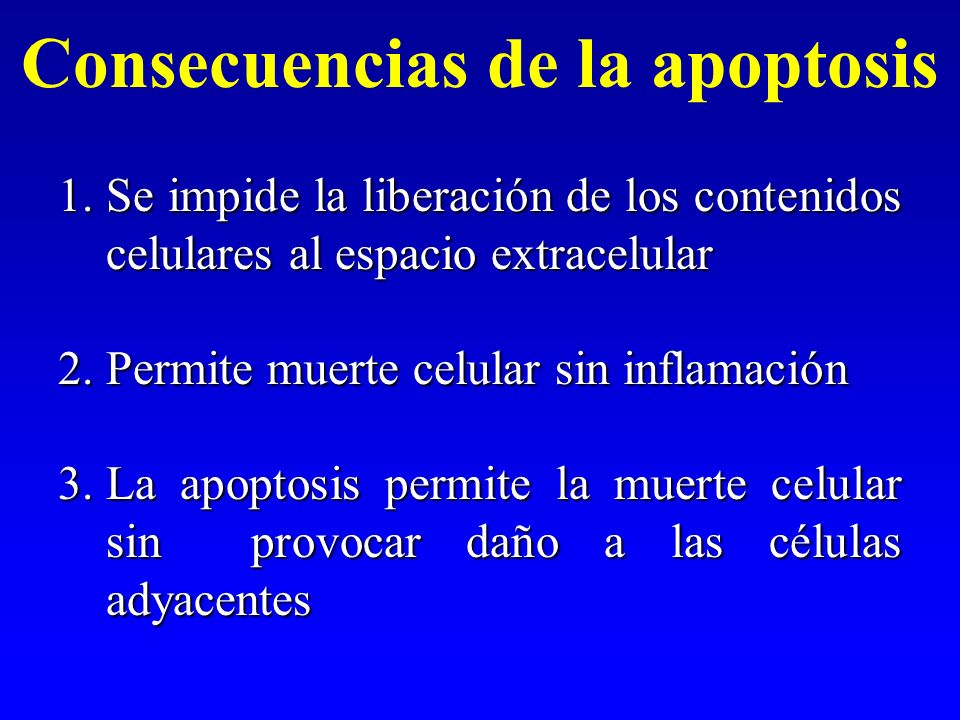 Consecuencias de la apoptosis 1.Se impide la liberación de los contenidos celulares al espacio extracelular 2.Permite muerte celular sin inflamación 3