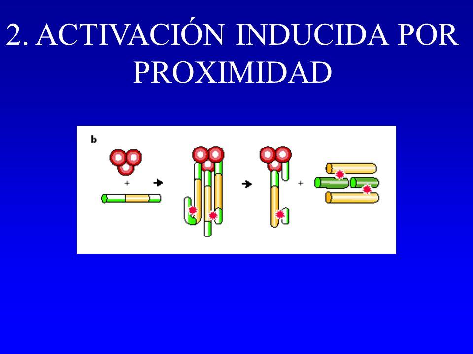 2. ACTIVACIÓN INDUCIDA POR PROXIMIDAD