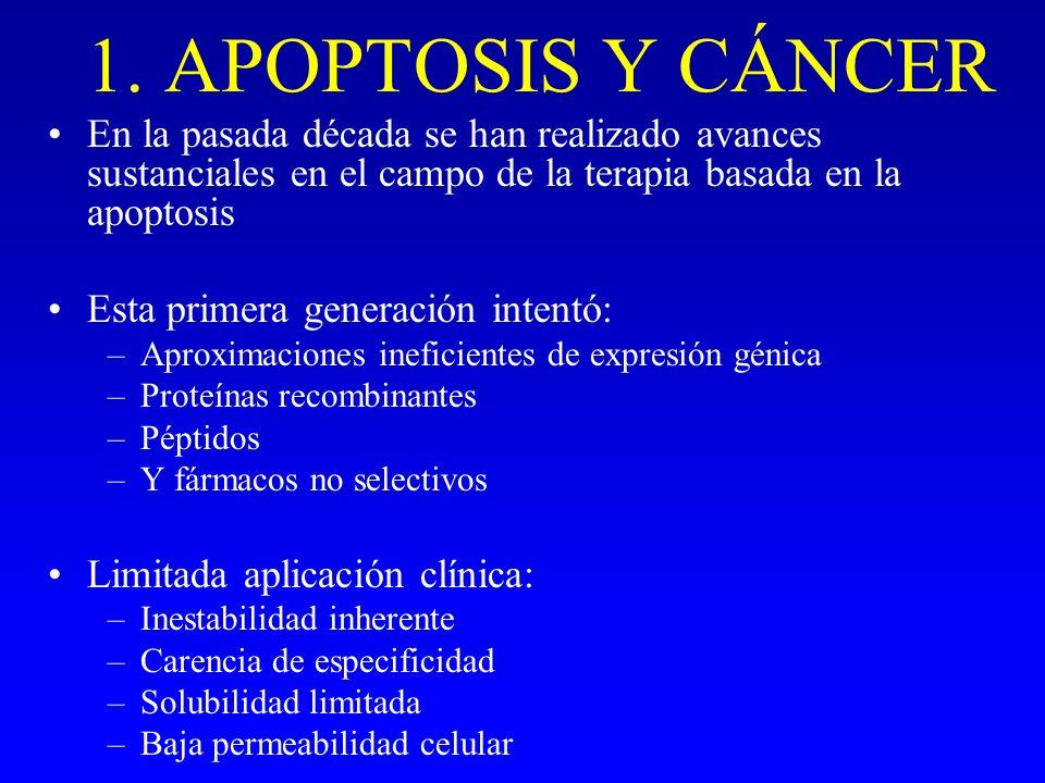 1. APOPTOSIS Y CÁNCER En la pasada década se han realizado avances sustanciales en el campo de la terapia basada en la apoptosis Esta primera generaci