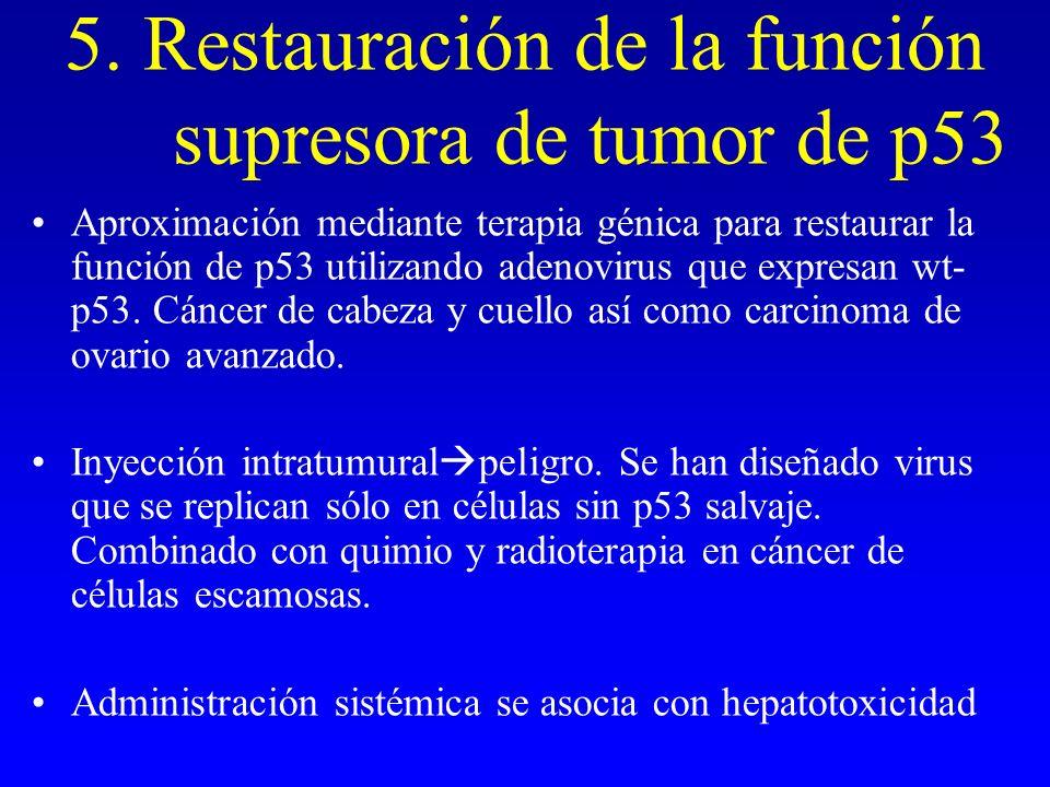 5. Restauración de la función supresora de tumor de p53 Aproximación mediante terapia génica para restaurar la función de p53 utilizando adenovirus qu