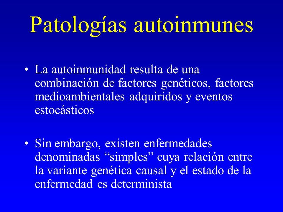 Patologías autoinmunes La autoinmunidad resulta de una combinación de factores genéticos, factores medioambientales adquiridos y eventos estocásticos