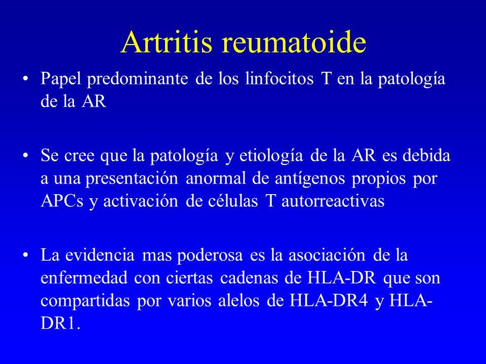 Artritis reumatoide Papel predominante de los linfocitos T en la patología de la AR Se cree que la patología y etiología de la AR es debida a una pres