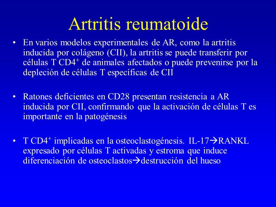 Artritis reumatoide En varios modelos experimentales de AR, como la artritis inducida por colágeno (CII), la artritis se puede transferir por células