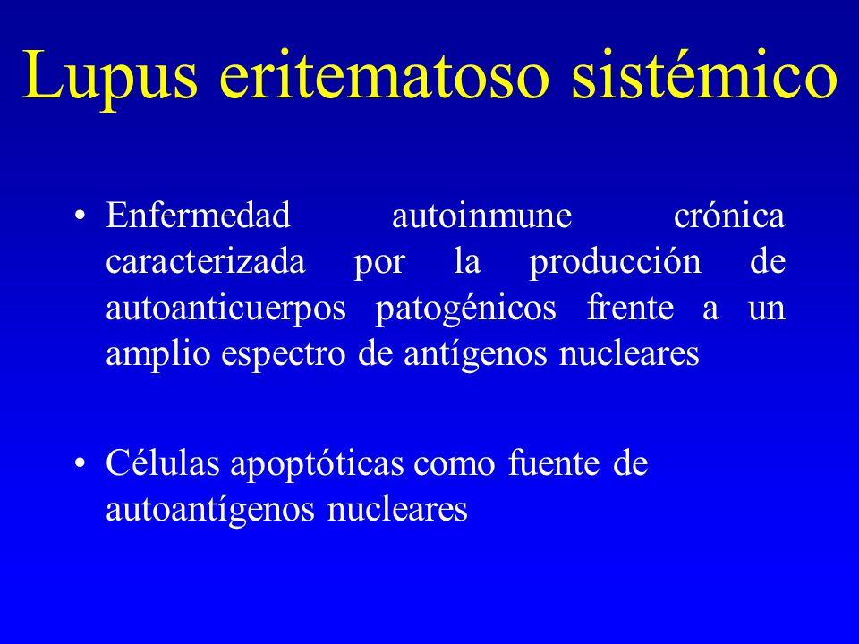 Lupus eritematoso sistémico Enfermedad autoinmune crónica caracterizada por la producción de autoanticuerpos patogénicos frente a un amplio espectro d