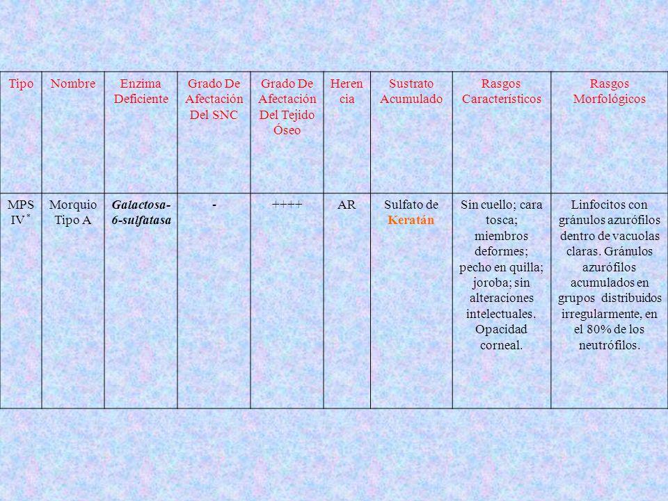 TipoNombreEnzima Deficiente Grado De Afectación Del SNC Grado De Afectación Del Tejido Óseo Heren cia Sustrato Acumulado Rasgos Característicos Rasgos