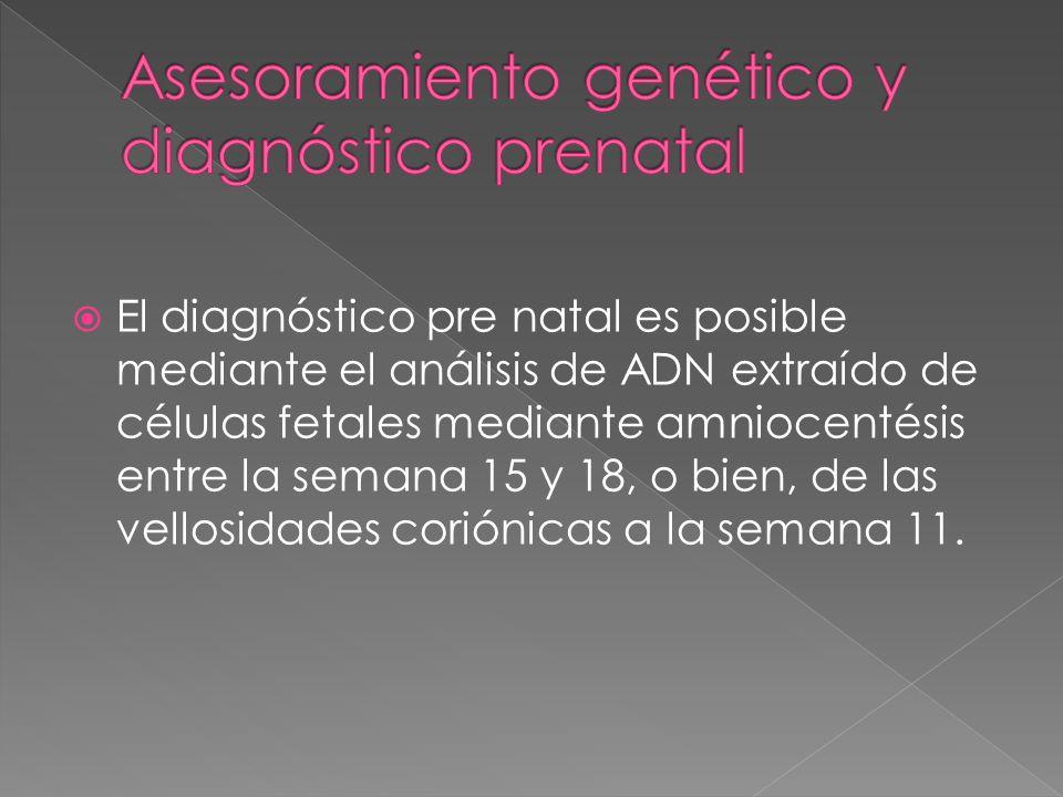 El diagnóstico pre natal es posible mediante el análisis de ADN extraído de células fetales mediante amniocentésis entre la semana 15 y 18, o bien, de