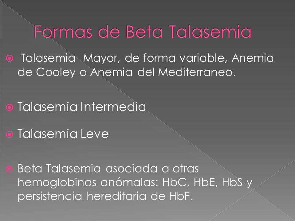 Talasemia Mayor, de forma variable, Anemia de Cooley o Anemia del Mediterraneo. Talasemia Intermedia Talasemia Leve Beta Talasemia asociada a otras he