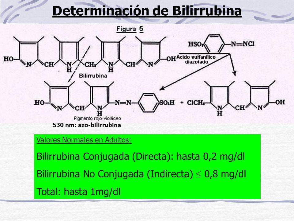 Determinación de Bilirrubina 530 nm: azo-bilirrubina Valores Normales en Adultos: Bilirrubina Conjugada (Directa): hasta 0,2 mg/dl Bilirrubina No Conj