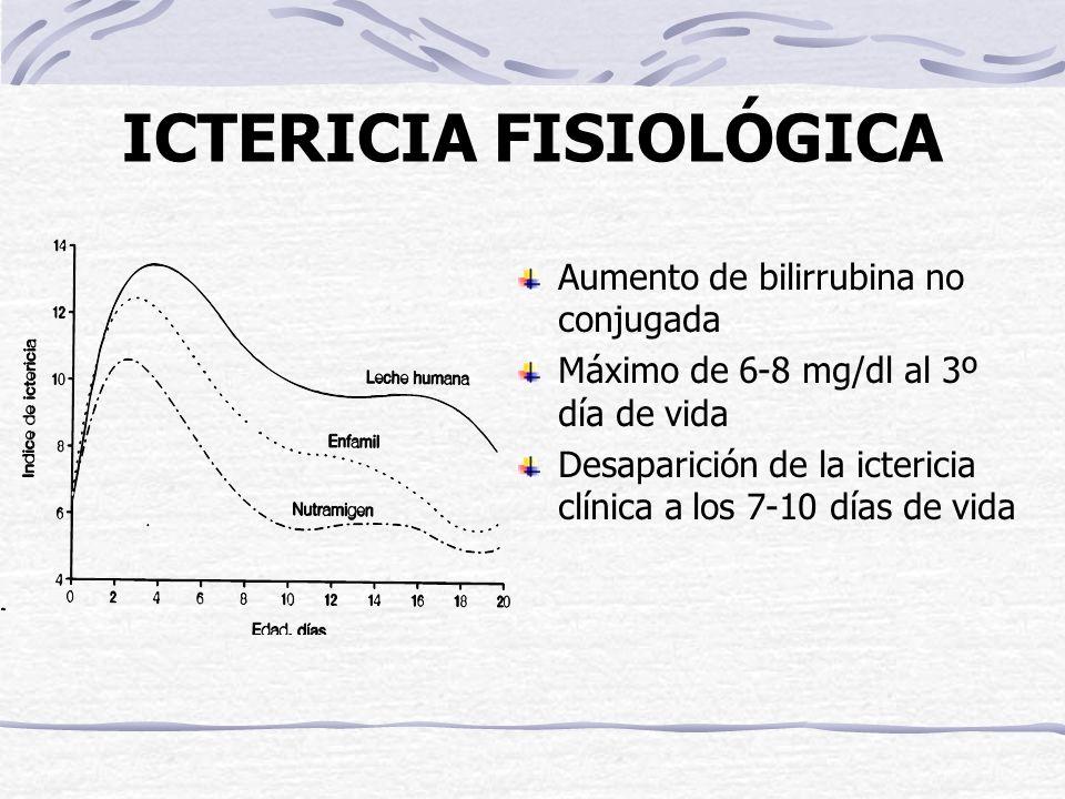 ICTERICIA FISIOLÓGICA Aumento de bilirrubina no conjugada Máximo de 6-8 mg/dl al 3º día de vida Desaparición de la ictericia clínica a los 7-10 días d