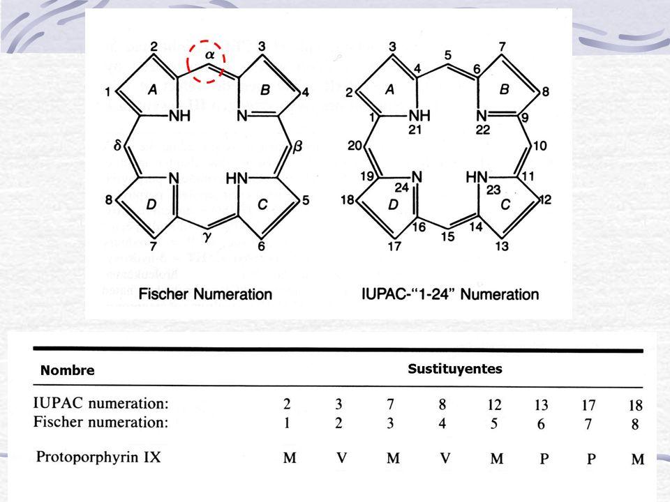 Síndrome de Dubin-Johnson Biología Molecular: